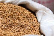 Российские мошенники продали жителю Казахстана виртуальное зерно