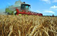 С 1 февраля Костанайские аграрии смогут подавать заявки на получение инвестиционных субсидий