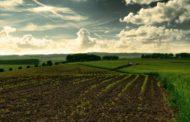 Кому и зачем выгодна отмена земельного моратория?