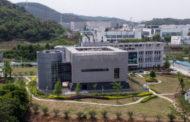 Эксперты ВОЗ исключили версию лабораторного происхождения Covid-19