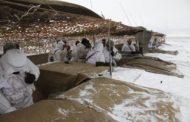 Маскировочные сети на 111 млн для минобороны оказались бракованными
