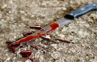 В Караганде мужчина убил своего собутыльника, расчленил и кормил кошек его мясом