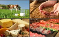 Узбекистан снял временные ограничения на ввоз казахстанской сельхозпродукции