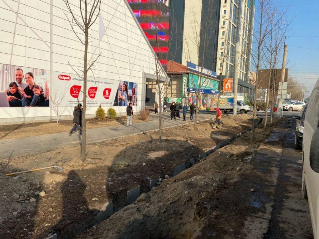 Суд оштрафовал дизайнера на четыре миллиона тенге за вырубку деревьев у магазина Sulpak