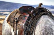 Несовершеннолетний упал с лошади и скончался