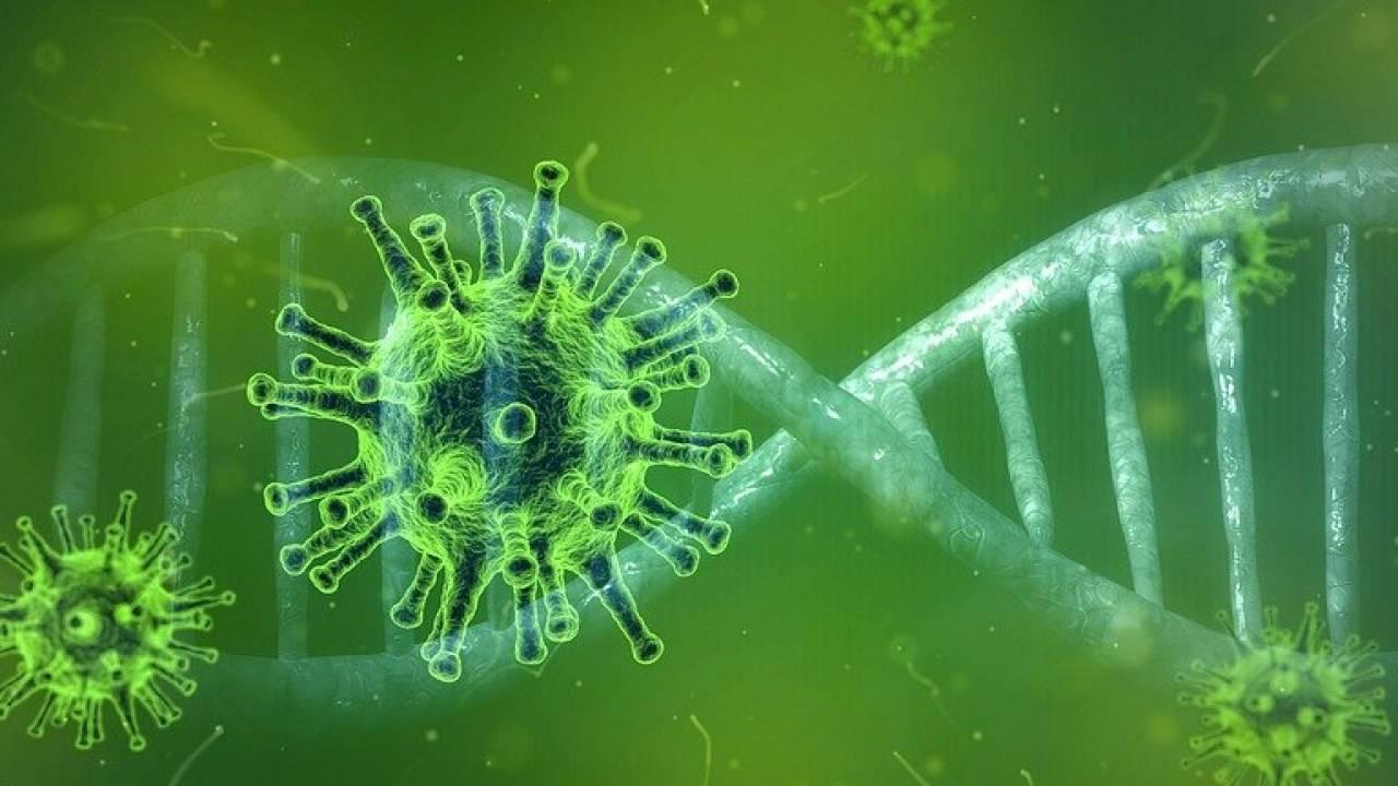 Новый способ заражения человека коронавирусом выявили ученые