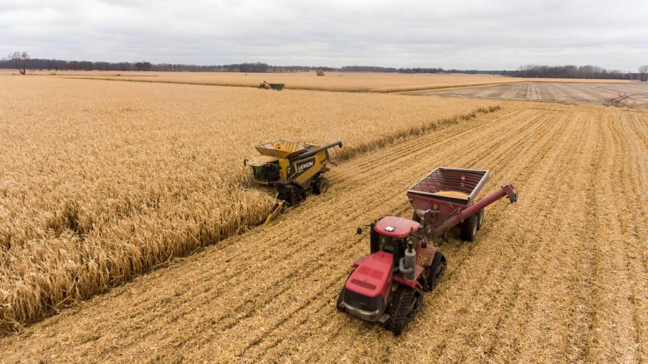 Парламент продлил мораторий на продажу сельхозземель казахстанцам