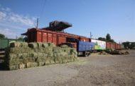 Несколько тонн сена отправлено в Кызылординскую область из Жамбылской