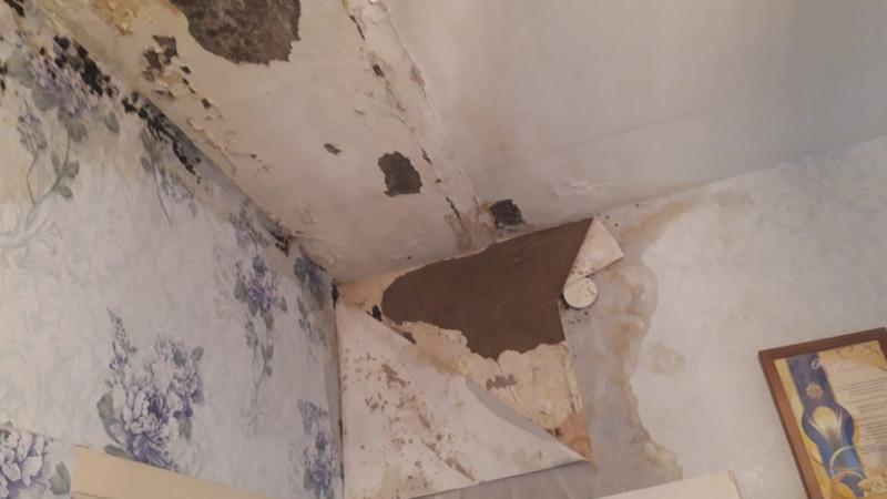 Квартиру с протекающей крышей выделили семье медиков в Костанайской области