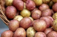 Рост цен был вызван выкупом 20% картофеля россиянами