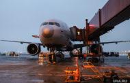 Курганскому аэропорту грозят авиакатастрофы из-за птиц на свалках
