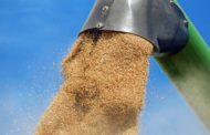 С 20 сентября корм для скота в Мангистаускую область будут поставлять по льготным тарифам