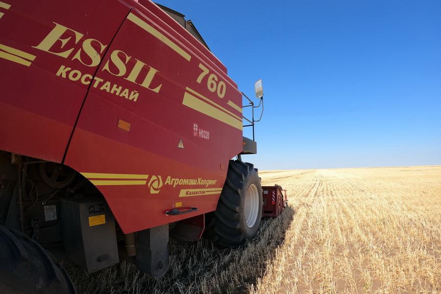 Экспорт зерна из Казахстана рухнул на 30%