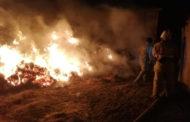 Тела троих детей нашли на месте сгоревшего сена в Атырауской области