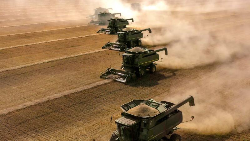 Токаев: Урожайность пшеницы может снизиться почти на 40 процентов